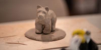 bear-project