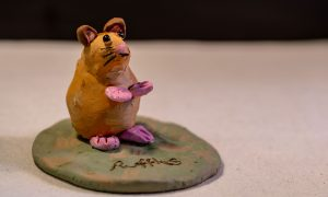 In memory of a well loved pet mouse called Ruffles